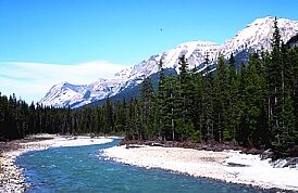 Kootenay national park bc rockies kootenays radium hot springs kootenay national park sciox Image collections