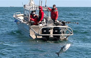 Bc salmon fishing lodge queen charlotte islands bc for British columbia fishing lodges